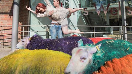 Dancers of Sandler's Wells Theatre with the coloured sheep of Henham Park - Paul Bayfield.