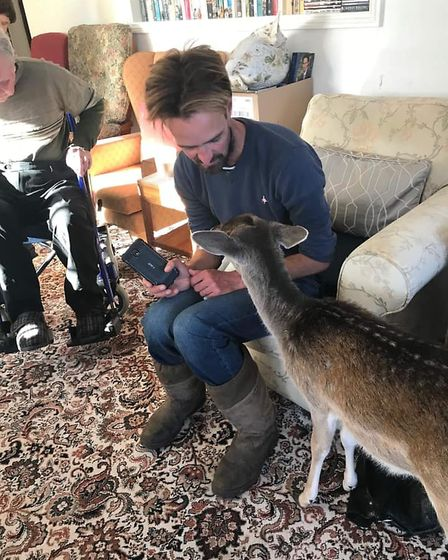 Ben Potterton of Earsham Wetland Centre with John the deer at the Dickleburgh care home. Picture: Cu