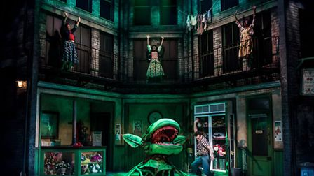 Little Shop of Horrors. Directed by Gareth Machin. Colchester Mercury. Skid Row