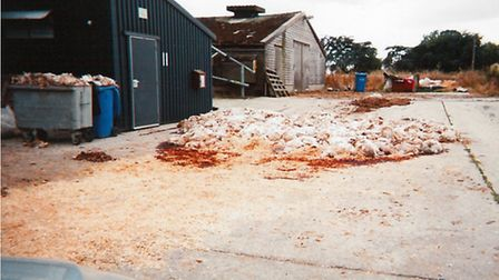 Paul Flatman has been sentenced after more than 6,000 chickens died at Hawksmill Farm