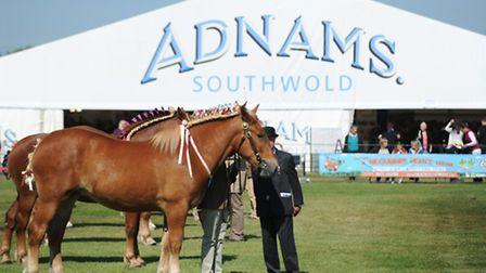 The sun shines for the first day of the Suffolk Show 2015.