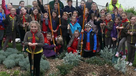 1st Clacton Rainbows, Brownies and Guides plant wild flower seeds in the gardens on Marine Parade We