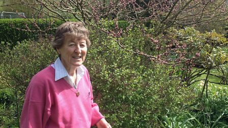 Pam Turtle: a seedaholic since she was 'small enough to seek fairies in tulips'