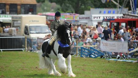 Crowds of people flocked to the Hadleigh show last year