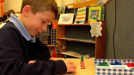 Pupils at the Meadows Montessori Primary School in Ipswich take part in the lessons.