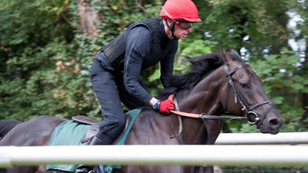 William Gittus riding in the Newmarket Town Plate