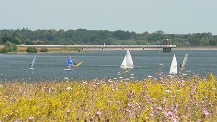 Anglian Water has unveiled plans for a new campsite at Alton Water near Ipswich.