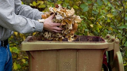Street sweeping teams in South Norfolk want to know where autumn leaves have left pavements slippy.