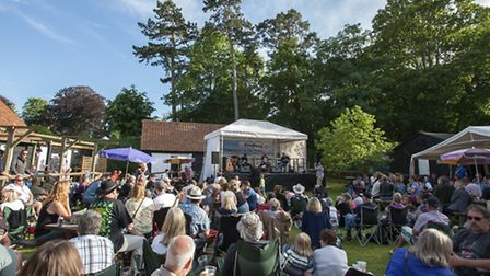 Stow market Blues music festival at the Museum of East Anglian LifePart of the large crowd who att