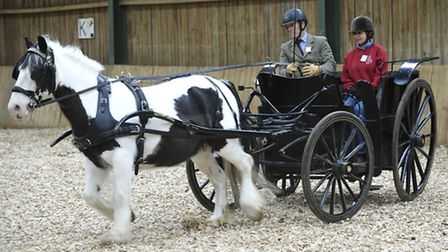Carriage driving demonstration in the indoor arena at Pettistree Farm, Sutton for HRH The Princess R