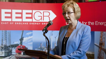 Energy minister Andrea Leadsom told 200 representatives of the energy industry in the East of Englan