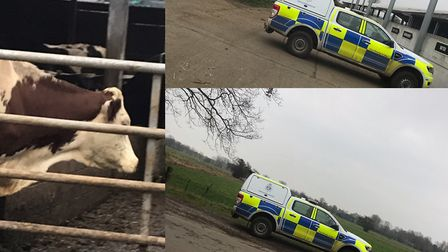 South Norfolk Police have asked people to report suspect people and vehicles around farms following