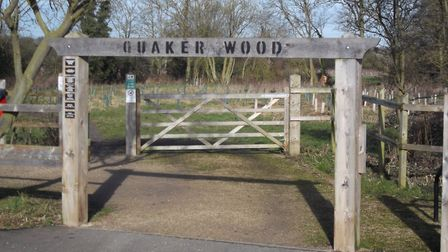Volunteer maintained Quaker Wood, off Factory Lane between Roydon and Diss, is a great place for a s