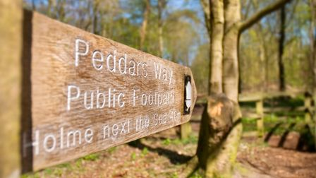 Knettishall Heath has a number of signed paths around the park and is the start of Peddars Way. Pict
