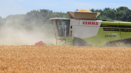 Harvest in Great Barton on Sunday afternoon by Andrew Mutimer