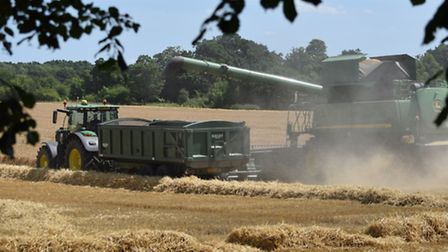 The 2015 harvest gets under way on a field of barley in Fornham�St Martin near Bury St Edmunds.
