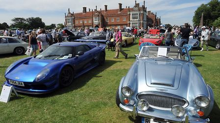 Two thoroughbreds on show - a Noble supercar and a classic Austin Healey.