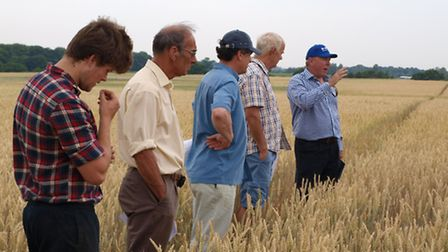 John Poulton of CROPCO, right, speaking to visiting farmers at hybrid wheat event at Stanway, near C