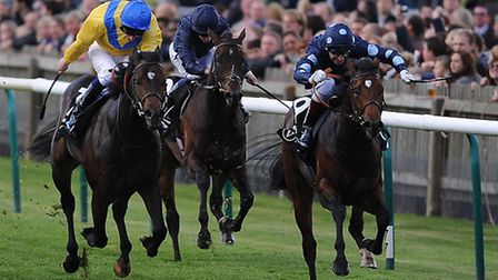 Adam Kirby, yellow silks, is in action at Newmarket tonight.
