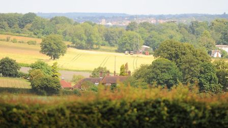 Dedham Vale Area of Outstanding Natural Beauty and Stour Valley Forum host conference entitled Conse