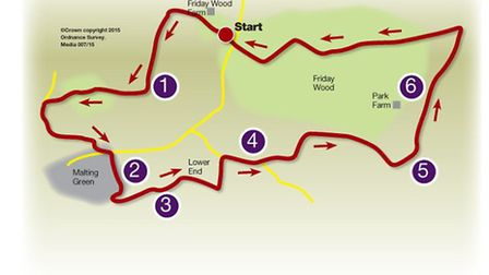 Route of the Friday Woods walk
