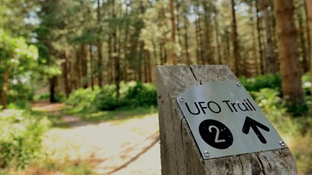 Rendlesham Forest where the 1980 UFO sightings took place.