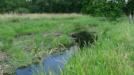 River Glaven in Norfolk - healthy rive in great ecological condition following some habitat enhance