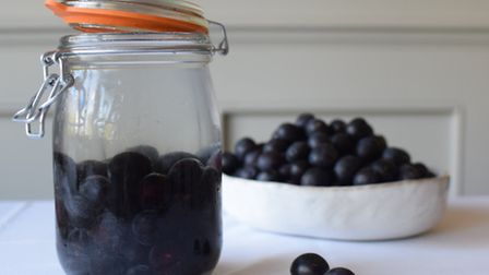 Where have you been to pick sloes and blackberries this autumn?