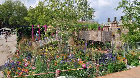 The Montessori Centenary Children's Garden by Jody Lidgard that has won a gold medal at the Chelsea