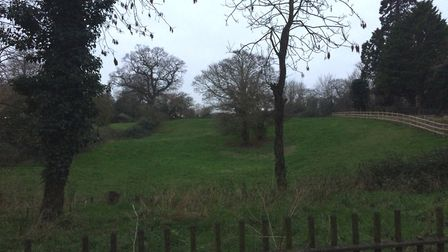 Diss Lawns, also known as Parish Fields, could be developed into a complex of 24 retirement bungalow