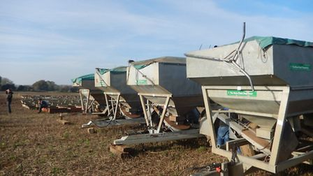 Five Rotafeeders realised from £1,800 to £5,500.