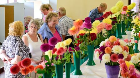 Diss & District Horticultural Society's early autumn show in 2017. Picture: Angela Sharpe