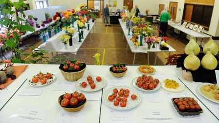 Diss & District Horticultural Society flower show at Roydon Village Hall in 2014. Picture: Angela Sh