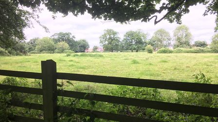 Parish Fields in Diss could be developed into a complex of 24 retirement bungalows. Picture: Simon P