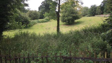 Diss Parish Fields, seen from Mount Street, could be developed into a complex of 24 retirement bunga
