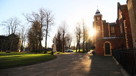 Winter sun in the grounds of Bury St Edmunds cathedral.