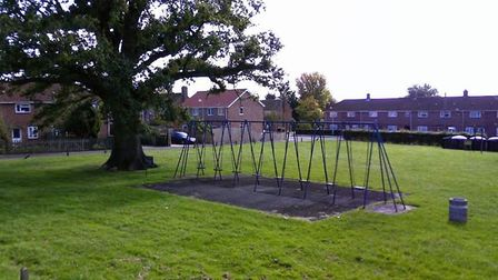 Firefighters had to rescue a teenager stuck on a children?s swing in Willbye Avenue in Diss. Picture