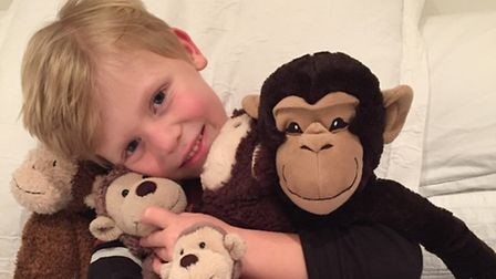 Ellen's son and his collection of monkeys