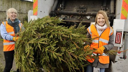 Chloe Winter and Ruth Bendell unload trees for St Helena's Christmas Tree-Cycle at the Colchester Re