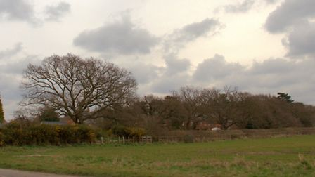 The land in Kesgrave off Bell Lane which could be part of a 300-home development.