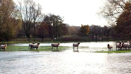 The CLA wants support for landowners to put up flood defences