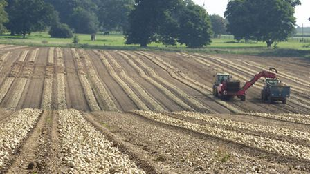  It's been a difficult year for farming, writes Ben Underwood.