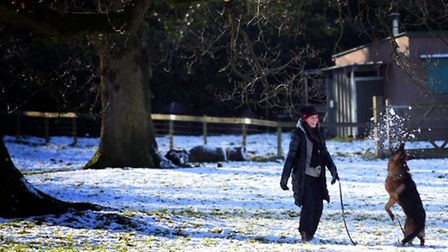 Haughley Park was a blanket of white on the morning of January 17.