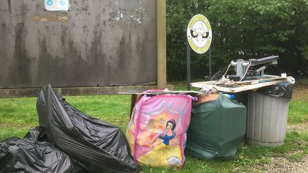 Clean up of the site where travellers set up camp at Scole Pocket Park. Picture: Simon Parkin