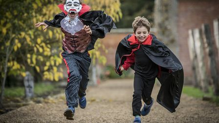 Spooky costumes will be much in evidence at Halloween events across South Norfolk. Picture: Matthew
