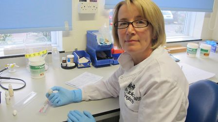 Philippa Unsworth at work in a laboratory in the Microbiology Unit near Colchester General Hospital