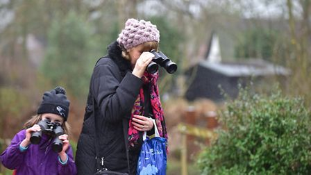 Visitors got to take part in the Big Garden Bird Watch at the Flatford RSPB over the weekend. Amy a