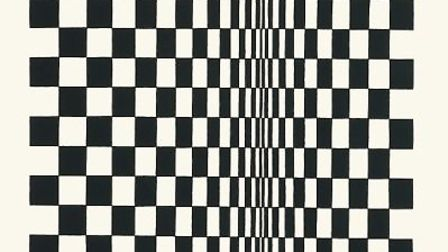 Untitled Based On MovementSquares (1962) by Bridget Riley part of a Diss exhibition. Picture: Diss C
