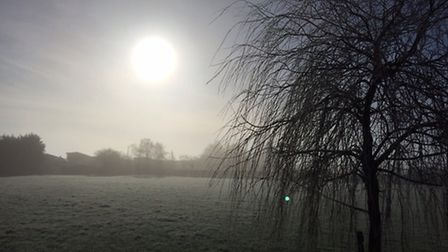 Cold morning in Ipswich. Image: Barry Pullen