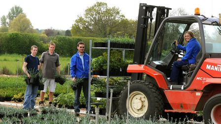 Howard Nurseries at Wortham, near Diss, now grows two million plants each year and employs 35 people